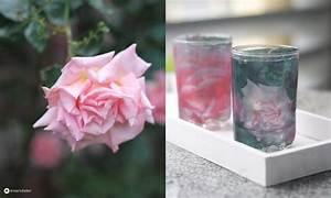 Papier Auf Glas Kleben : fototransfer auf glas diy windlichter ~ Watch28wear.com Haus und Dekorationen