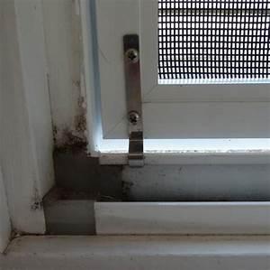 Fliegengitter Fenster Selber Bauen : fliegengitter zum klemmen qr13 hitoiro ~ Lizthompson.info Haus und Dekorationen