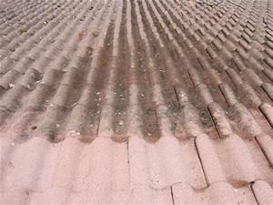 Tarif Nettoyage Toiture Hydrofuge : nettoyage de tuiles ~ Melissatoandfro.com Idées de Décoration