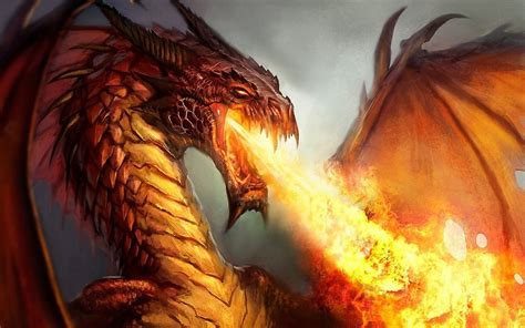 fantasy art dragon fire artwork wallpapers hd desktop