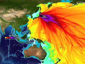 Japan Earthquake Vibrations Nearly Reached Space
