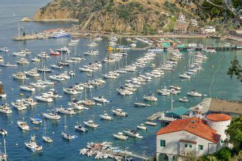 Top 10 Things to Do on Catalina Island