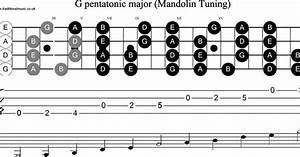 Scale  Stave And Neck Diagram For Mandolin Scale  G Pentatonic