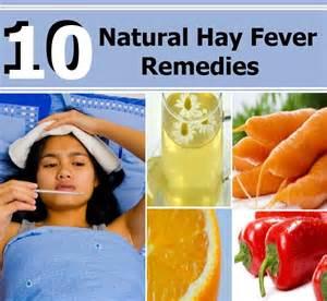 hay fever Hay Fever