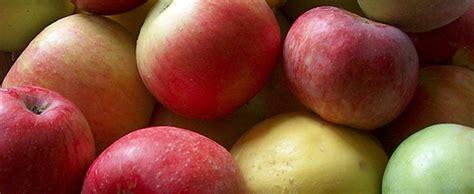 cuisiner les pommes 5 délicieuses façons de cuisiner les pommes nouvelles