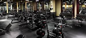 Top Affordable Gyms in Delhi - Food | Travel | Lifestyle