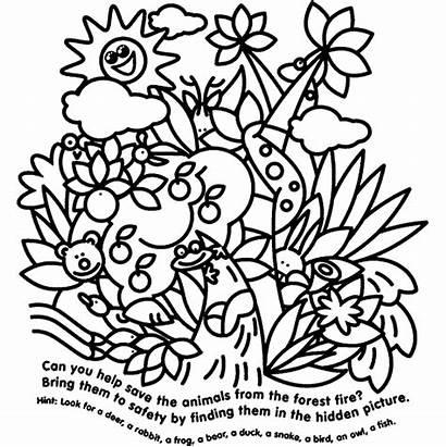 Crayola Coloring Animals Hidden Pages Animal Sheets