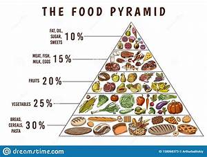 Healthy Food Plan Pyramid  Infographics For Balanced Diet