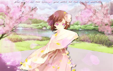 cherry blossom anime wallpaper  theoriginalfullmetal