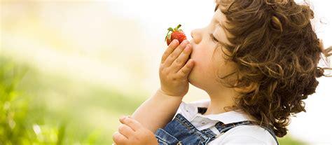 cuisiner magazine le développement du goût chez l 39 enfant