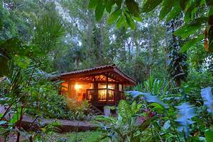Explore the Costa Rica rainforest with expert scientists ...
