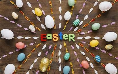 Petals Eggs Easter Colorful Happy