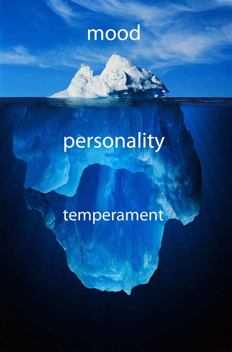 expressing  truth blog temperament personality mood