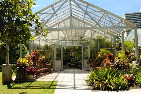 foster botanical garden a guide to oahu s best botanical gardens hawaii magazine