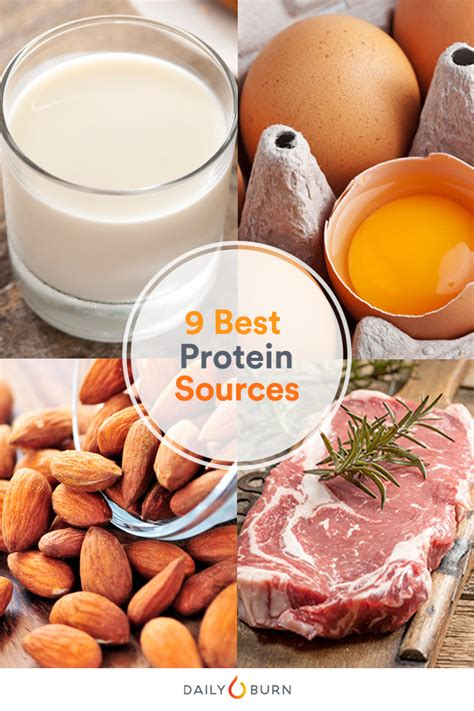 Got Milk? The 9 Best Protein Sources To Build Muscle