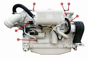 Cummins-qsc-8 3-engine-hoses-hx-side