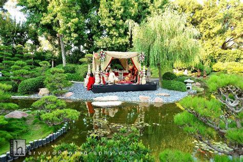 stunning wedding photo of enchanted garden wedding venue
