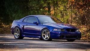 Mustang Cobra Terminator   Mustang cobra, Mustang cars, 2004 ford mustang