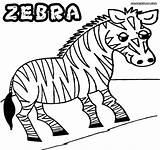 Zebra Coloring Colorings Sheet Animal Coloringway sketch template