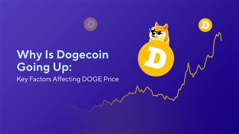 Why Is Dogecoin Going Up: Key Factors Affecting DOGE Price ...