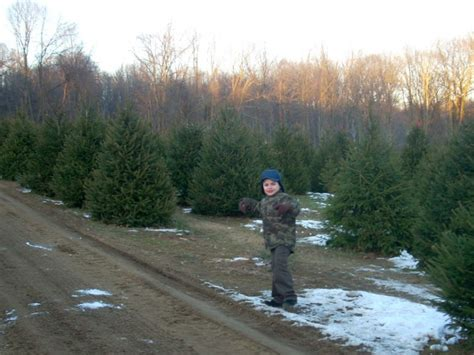 nj s cut your own christmas tree farms mahwah nj patch