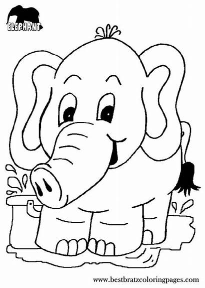 Coloring Pages Elephant Printable Colouring Patterns Books