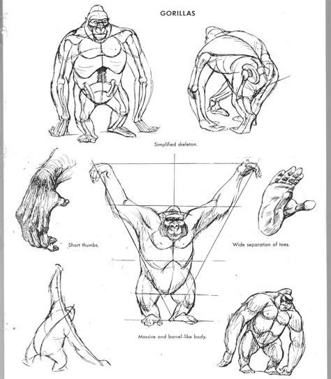 art  animal drawing image