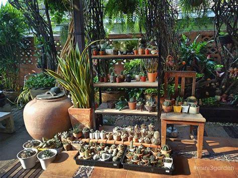 GREEN AREA 🌵🍃 #FeelFresh #mini3garden #succulents #cactus ...