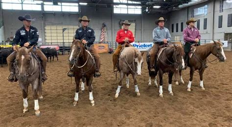 yellowstone trainers horse horses tv they quarter episode western performance recent rode bring cow tracer bob gilson avila todd bergen