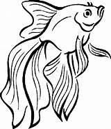 Fish Coloring Peixe Betta Colorir Peces Dibujos Colorear Imprimir Desenhos Pintar Pez Educative Colouring Fische Desenho Tropical Bestappsforkids Poisson Animales sketch template