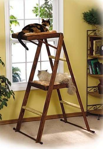 cat ladder cat ladder you could also put a flat scratching surface