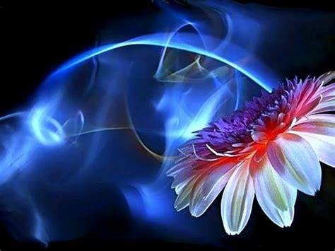 pc de bureau samsung fantastische bloemen bureaublad achtergronden 10466