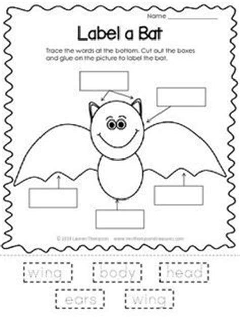 1000 ideas about bat craft on spider crafts 843   a0e11025010a7f8e151360a293dbd25c