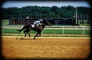 racehorses training today fra almanzor