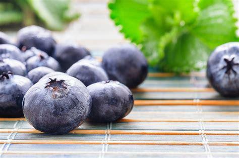 Krūmmellenes veselībai: bez šiem vitamīniem nu nekādi - 1188 Padomi