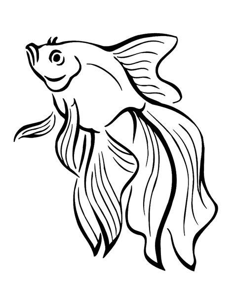 gambar mewarnai ikan koki