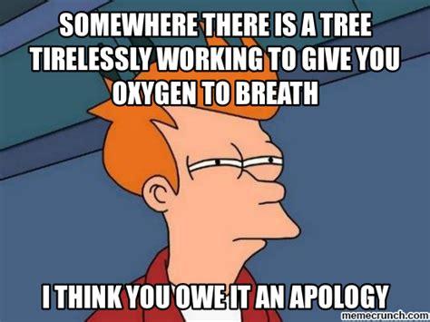 Apology Meme - apologize meme memes