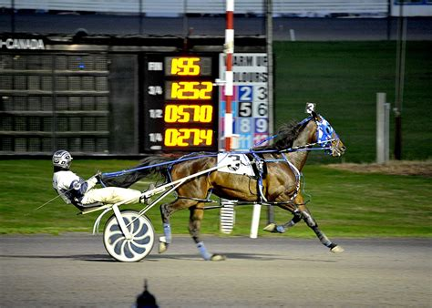 local buyers trainers praise coming changes at rideau carleton raceway
