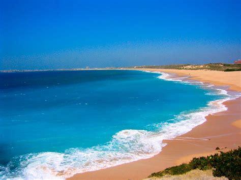 arriere plan de bureau animé maxalae fond dcran de plages paradisiaques arrire plan de