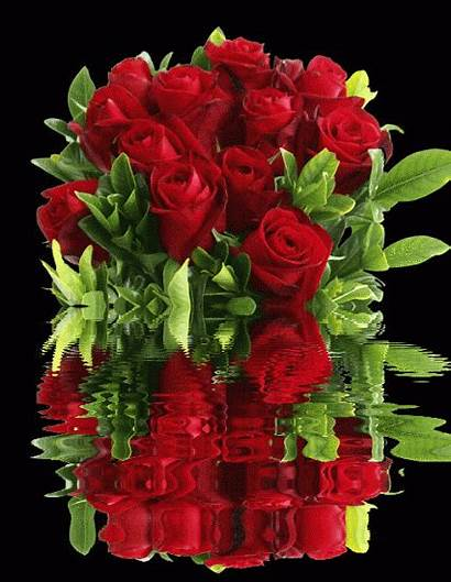 Morning Roses Bouquets Gifs Flores Weekend Flowers