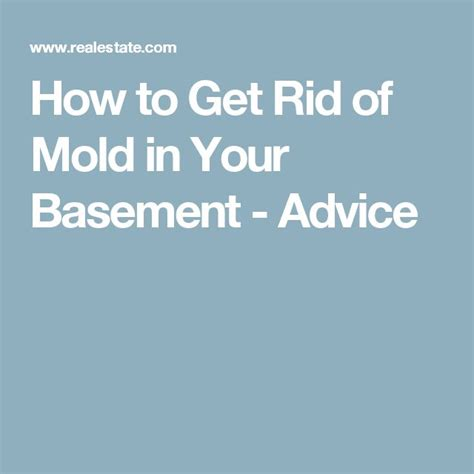 25 best ideas about mold in basement on