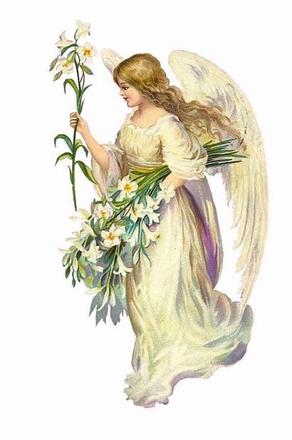 Angels Transparent Angel Clipart Victorian Clip Engel