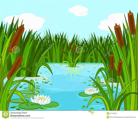 pond background duck pond background clipart clipart suggest
