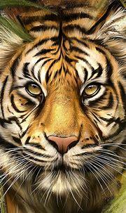 Download 1080x1920 Tiger, Painting, Artwork, Wildlife ...