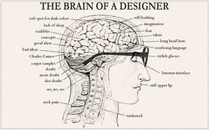 The Brain Of A Designer - Raleigh