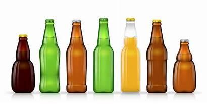 Beer Bottle Different Bottles Sizes Shapes Vector