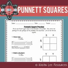 Punnett Square Practice Worksheet {ngss Aligned} By Kristin Lee Resources