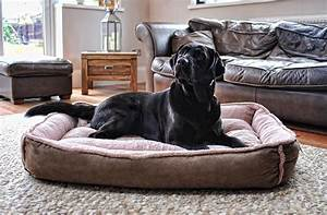 omega hooded cave covered dog bed extra large for large With covered dog beds for large dogs