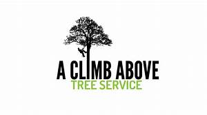 Serious, Masculine Logo Design for A Climb Above Tree ...