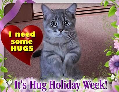 Cat Holiday Needs Hug Ecards Send Ecard
